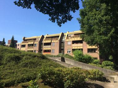 Schöne 2 Zimmer Wohnung in Lingen-Darme